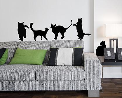 gatti vari