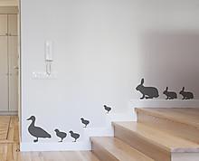 Conigli e Papere