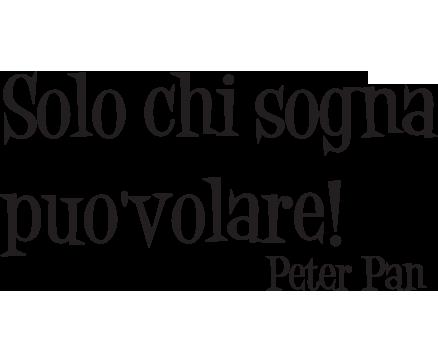 Adesivi Murali Peter Pan.Peter Pan Decorative Wall Sticker